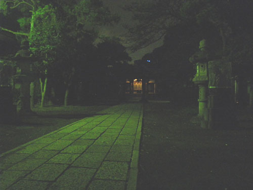 IMGP1397.jpg